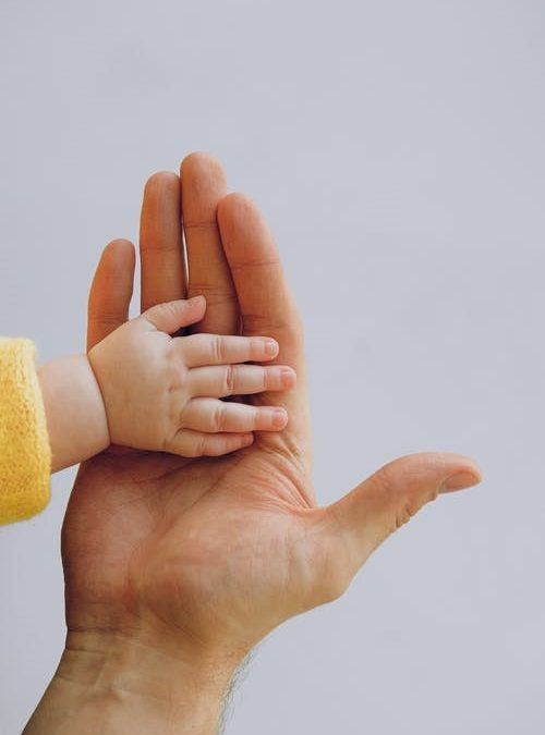 test de paternité