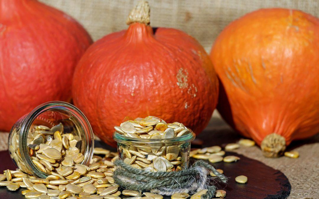 8 meilleures raisons d'aimer les graines de citrouille germées